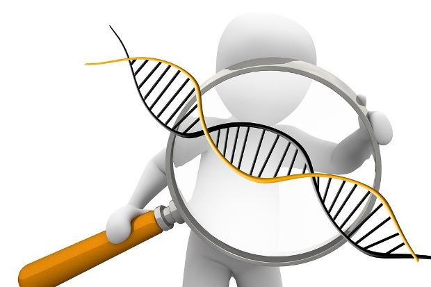 26-03-генетика