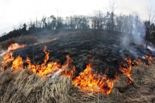 горение - пал - сухой травы