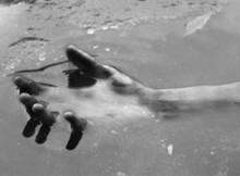 тело в воде