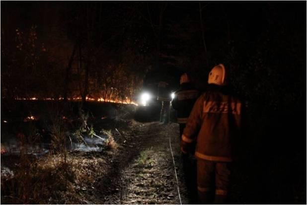 16-05-пожар-лес