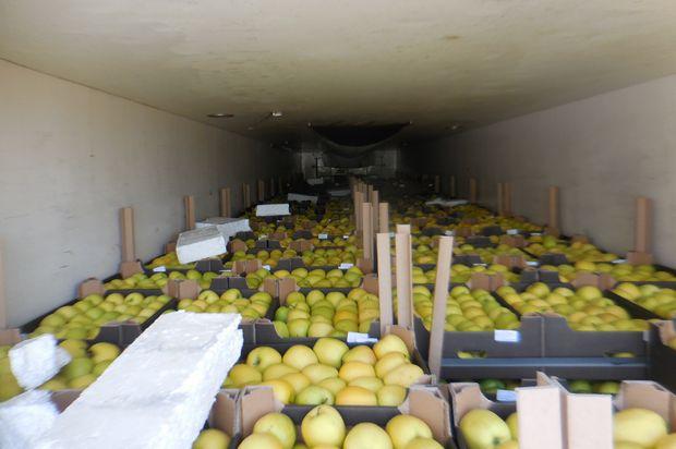 17-05-яблоки