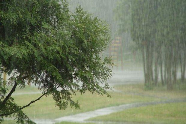 сильный дождь-ливень