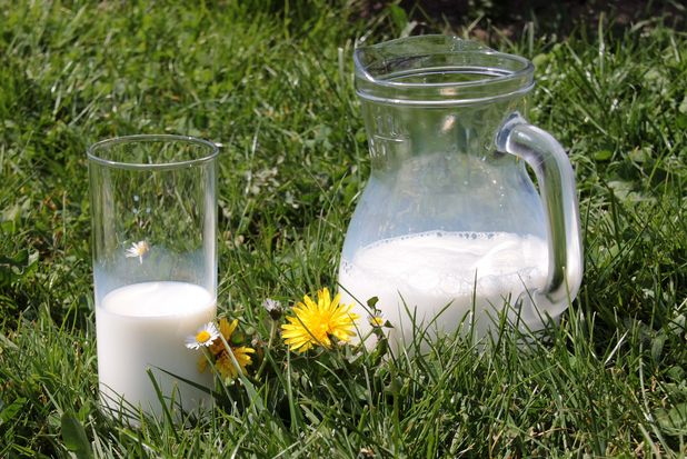 25-07-молоко
