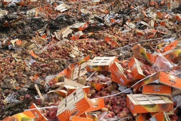уничтожение нектаринов