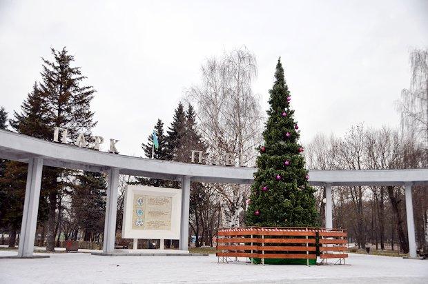 ель-парк победы-новый год
