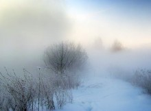 туман-зима