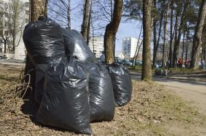 Чистый город мешки