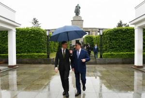 Руденя зонтик