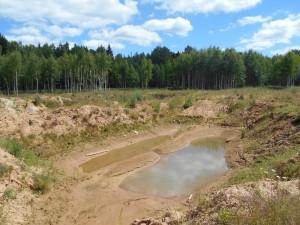 Так выглядел земельный участок до начала рекультивации