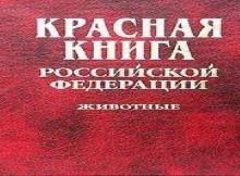 красная_книга.pUzjK