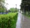 парк_победы.wKiAm