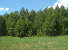 04-07-земля-конаковский
