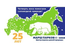 логотип_мп_2020-мал.yDiKV