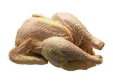 цыпленок-бройлер.OGqay