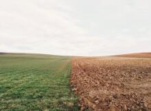 сельхозугодья